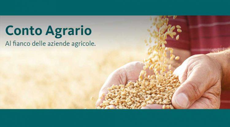 aziende-agricole-banca